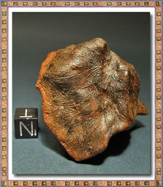Millbillillie meteorite. This is one of Australian eucrite meteorites that have thicker and defined lines on its surface, that allow viewing the path of the air pushing the droplets of molten material because the bark of the meteorite on his fall.