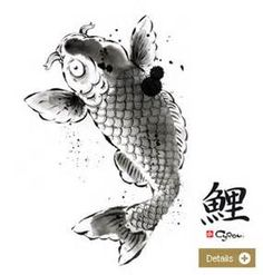 asian carp drawing - StartPage by Ixquick Picture Search