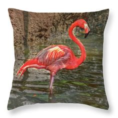 Florida Throw Pillow featuring the photograph Symbol Of Florida by Hanny Heim Snowbird Photography #birds #flamingo #animals #florida