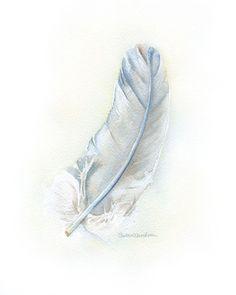 Plume aquarelle peinture grise Fine Art Print 11 x 14