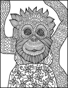 Animal Coloring Page Monkey Printable Adult