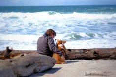 talking things over with your corgi.