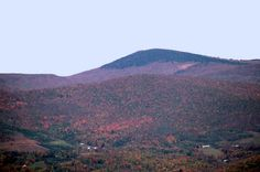 Mt Rogers, VA - highest point in VA.  Beautiful hike that I'd love to do again.
