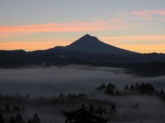 Sandy, Oregon - where I learned to ride a motorcycle, hike, & fall in love with nature.