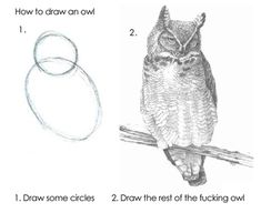 draw the rest of the fucking owl.