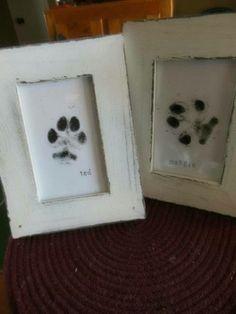 Framed pawprints - too cute!