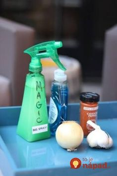 Bug spray for the yard: Blend: 1 small onion, 1 head of peeled garlic, 4 cups water, and tablespoons cayenne pepper. After blending, add a tablespoon liquid dish soap and strain into a spray bottle. Getting Rid Of Bees, Keep Bugs Away, Get Rid Of Ants, Insecticide, Bug Off, Garden Pests, Ants In Garden, Herb Garden, Insect Repellent
