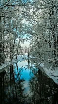 Crystal blue winter reflection.