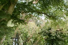 undefined Irish Wedding, Wedding Events, Dandelion, Stylists, Fruit, Elk, Flowers, Plants, Moose