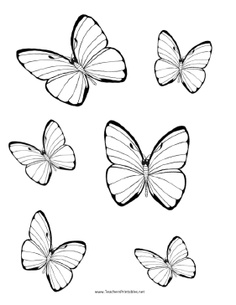 large printable butterfly template free printable butterflys