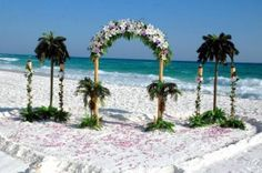 beach weddings photos