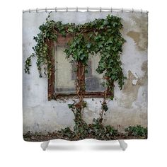 Window overgrown by ivy Shower Curtain by Ren Kuljovska. This shower curtain is made from polyester fabric and includes 12 holes at the top of the curtain for simple hanging. The total dimensions of the shower curtain are wide x tall. Shower Curtain Rings, Shower Curtains, Curtains For Sale, Cute Home Decor, Types Of Art, Basic Colors, Gifts For Girls, Color Show, Customized Gifts