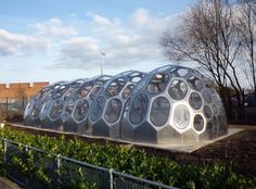 SPACEPLATES - a modular greenhouse in Bristol that mimics the geometry of sea urchins Eco Architecture, Architecture Magazines, Biomimicry Architecture, Container Architecture, Modern Greenhouses, Sea Urchin Shell, Sea Urchins, Laser Cut Aluminum, Water From Air