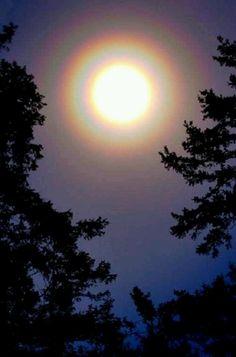 Sun & Moon halo