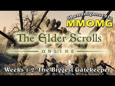 The MMOaholic - MMORPG Madness!: The Elder Scrolls Online - Weeks 1 & 2: The Bigges...