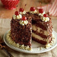 Rich Chocolate Cake with White Chocolate Mousse and Cherry Sauce ~Sweet & Savory Brownie Toppings, Brownie Bites, Brownie Cake, Raspberry No Bake Cheesecake, Peppermint Cheesecake, White Chocolate Mousse, Chocolate Cake, Chocolate Heaven, Chocolate Cherry