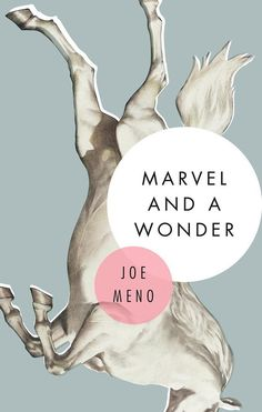Marvel and a Wonder by Joe Meno | 34 Of The Most Beautiful Book Covers Of 2015