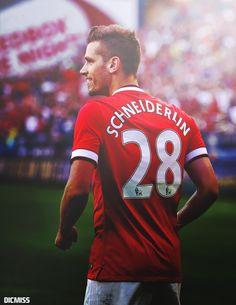 Morgan Schneiderlin of Manchester United