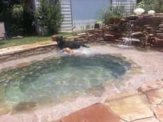My backyard pool!