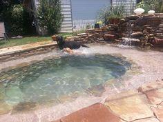 My garden pool! My garden pool! My garden pool! My garden pool!