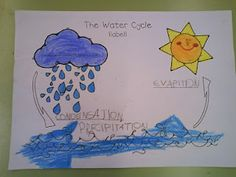 Help students enjoy learning and remember various environmental cycles by drawing it out after they study it.