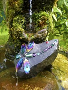 DragonFly Rocks Products