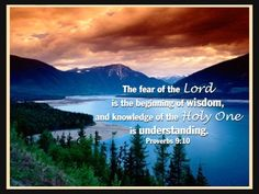 The fear of the Lord is the beginning of wisdom, and knowledge of the Holy One is understanding.  9:10