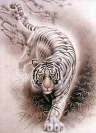 3d Tiger....would be an awesome tatoo  I WANT THIS (when I'm eligible, of course)