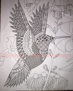 Hummingbird template with background. #dubbybydesign #zentangle #zentangleinspiredart #benkwok #ornationcreation #hummingbird #inkdrawing #zendoodle #doodle