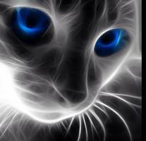 hypnotising images - Szukaj w Google