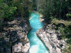 Centro Ecoturistico Causas Verdes Las Nubes: vista de la salida del tunel -Chiapas