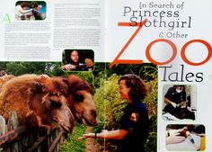 Profile of Dr. Lucy Spelman from when she was the field veterinarian at the National Zoo in Washington, D.C. Nonfiction Books, Washington, Profile, Future, User Profile, Future Tense, Washington State
