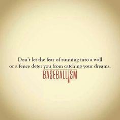 fences troy baseball quotes