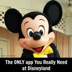 This is a must-have app for your Disneyland vacation  My family saved SO much time (Skip the lines!) #Disney #Travel #Tips
