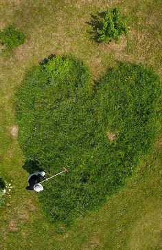 ♀ Environmental art earth art land art #green how about doing this with a border of flowers or rocks around it...