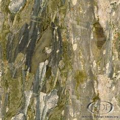 Verde Fashion Granite.  Mossy green, grey, cream and slate gray colors are all in this granite.Doesn't leave water marks, promise. Perfect for bathroom.