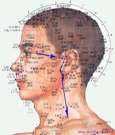 3VB est le 3ème point du méridien de la vésicule biliaire, c'est aussi un point local à connaitre.