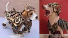 Image result for medieval harness for dogs