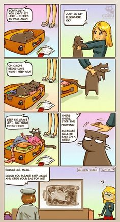 The one about persistence - Suitcase cat = forever love - Comics - Catsu The Cat Crazy Cat Lady, Crazy Cats, I Love Cats, Cute Cats, Catsu The Cat, Gato Animal, Funny Animals, Cute Animals, Son Chat