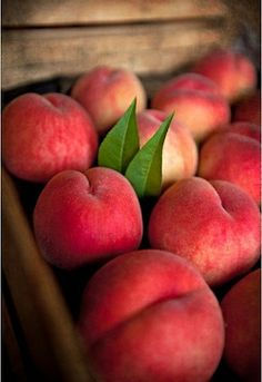 Fresh peaches - I would love to have fruit trees one day.