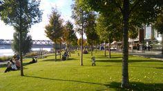 BA jeseň... Bratislava, Golf Courses