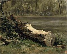 Study Of A Tree Trunk  Carlos de Haes