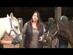 What is normal aging in a horse and what are clinical signs of Cushing's disease (PPID). Dr Joanne Ireland, Veterinary Epidemiologist, The Animal Health Trust, Newmarket.