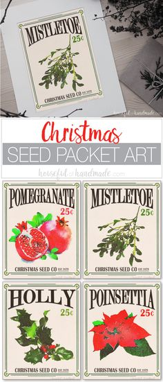 Free printable Christmas seed packet art is the easiest way to add a little rustic charm to your home this holiday season. Four classic Christmas flowers and plants were turned into vintage inspired seed packets. With loads of red and green, these beautiful Christmas art prints will help you decorate for the season in no time. Housefulofhandmade.com