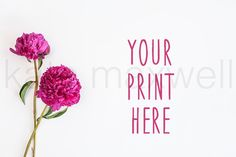 #329 KATE MAXWELL Styled Mockup. Photoshop Actions. $15.00