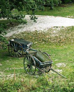 Goat Wagons