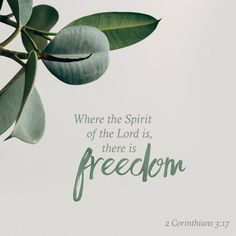 Now the Lord is that Spirit: and where the Spirit of the Lord is, there is liberty. 2 Corinthians 3:17 KJV