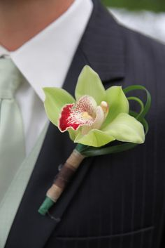 Forget Me Not Floral Events: Pro Pics - Liv and Kyle - beautiful elegant :) Orchid Boutonniere, Groomsmen Boutonniere, Groom And Groomsmen, Floral Wedding, Wedding Colors, Wedding Bouquets, Wedding Ideas, Contemporary Wedding Flowers, Green Orchid