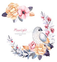 Beautiful Winter Collection With Branches,cotton Plants,flowers,little Bird Stock Illustration - Illustration of digital, cotton: 78636250 Wreath Watercolor, Watercolor Cards, Watercolor Flowers, Watercolor Paintings, Bird Illustration, Illustrations, Christmas Drawing, Bird Drawings, Watercolor Animals
