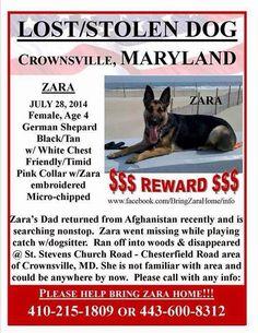 PLEASE SHARE! http://pawsforreaction.blogspot.ca/2014/08/national-guards-dog-suspected-stolen.html